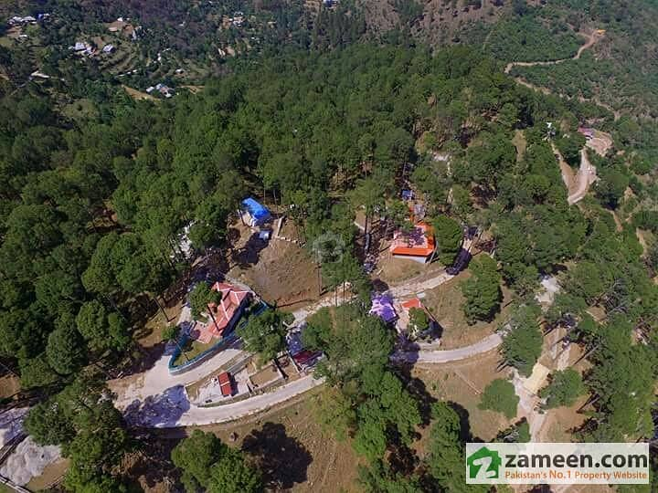 Residential Plot For Sale Make A Hill Station Resort Or Farmhouse In Beauty On Murree Hills