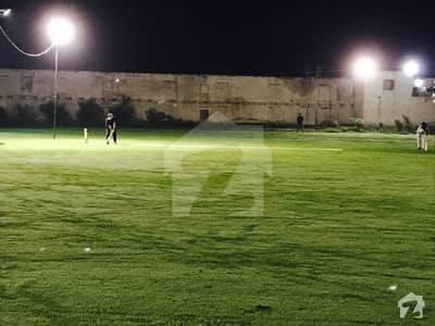 Excellent Cricket Ground 16 Kanal Farm House For Rent