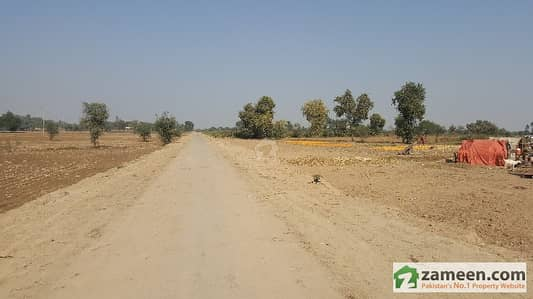 Agricultural Land and Agriculture Plots for Sale in Kamalia
