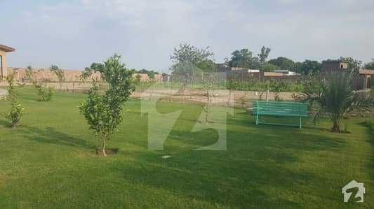 5 Kanal Farm House Available For Rent Per Day Rent 15000/-
