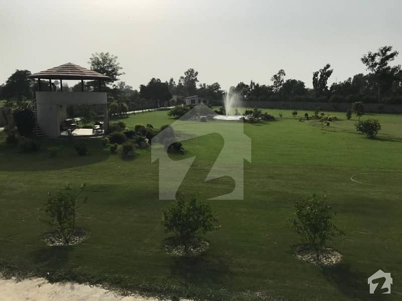 10 Acre Farm House Is Available For Rent