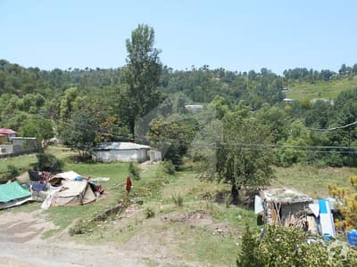 House Is Available For Sale In New Murree