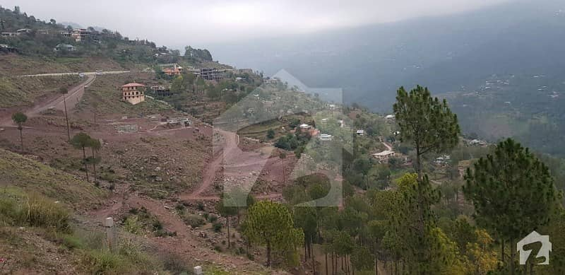 5 Marla Plot In A Gated Society Of Murree