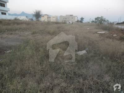 Amazing 10 Marla Plot For Sale In D12