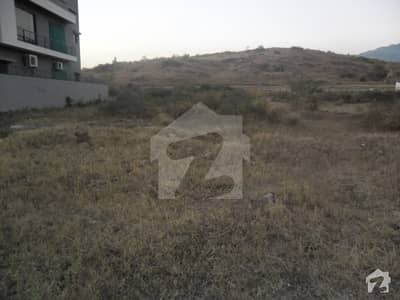 Amazing 50x90 Plot Available For Urgent Sale In D12