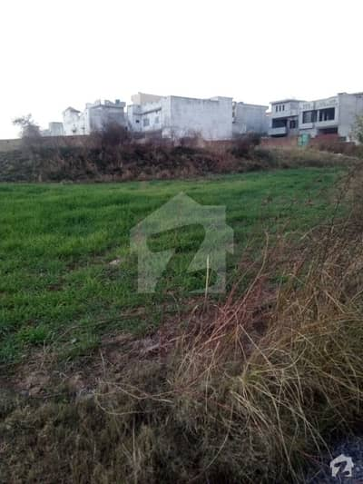 Beautiful location plot for sale size=40x80 investor price