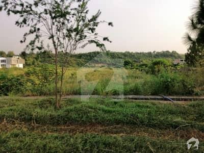 آگرو فارمنگ سکیم اسلام آباد میں 8 کنال رہائشی پلاٹ 3.5 کروڑ میں برائے فروخت۔