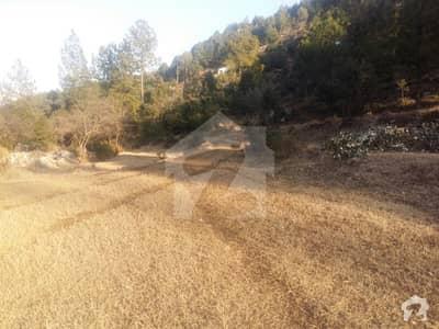 پیر سوہاوا اسلام آباد میں 100 کنال رہائشی پلاٹ 10 کروڑ میں برائے فروخت۔