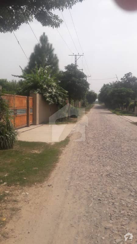 4 Kanal Farm House Attractive Location Reasonable Price From Market