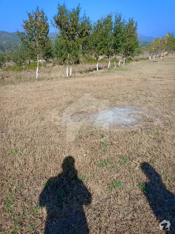 G-144 60x100 Plot For Sale Front Open Sun Face Extra Land