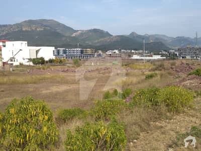 Commercial Plot Available For Sale With Investors Price