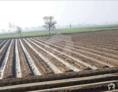 20 Acre Land For Sale In Shergarh District Okara