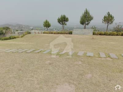 Farm House Is Available For Sale In Sector A