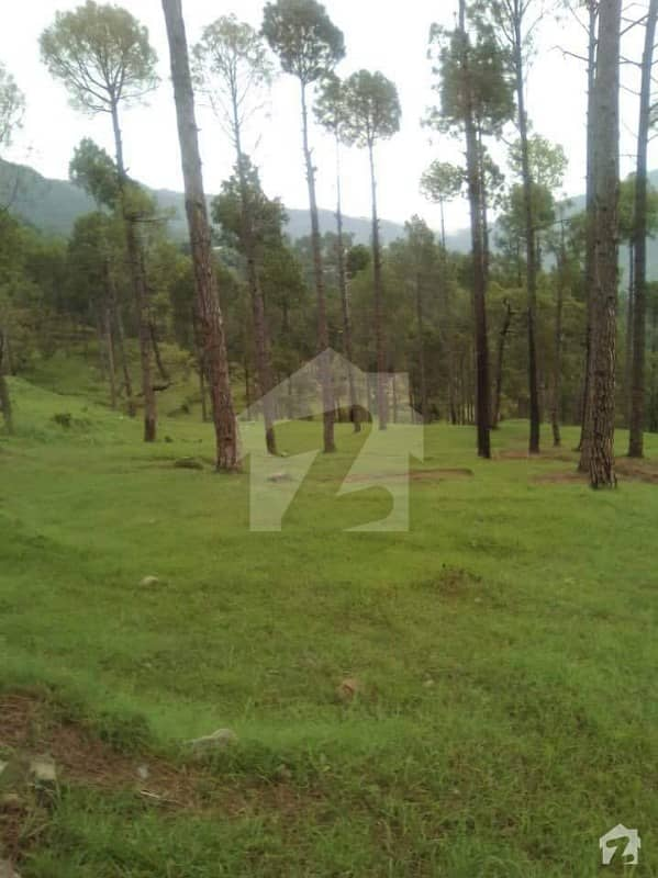 3 Kanal Farm House Land Is Available At Installments