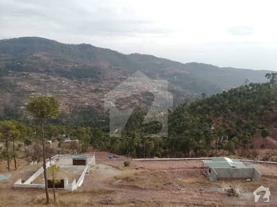 Residential Plots For Sale In Valley View Residency Main Expressway Cash  Installments