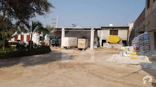 For Sale Poultry Form with Feed Factory in Kamalia