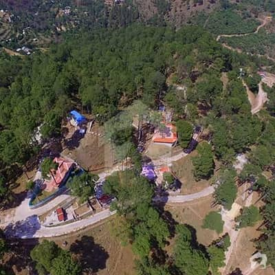 Murree Resorts Plot For Sale