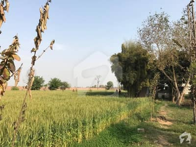 Agriculture Land for Sale In Pakistan