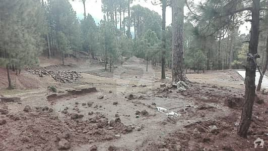 3 Kanal Plot For Sale On Angoori Road Muree Road