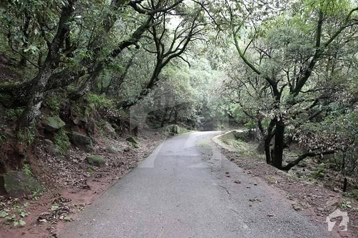 5 Marla On Very Scenic Murree Sights For Sale