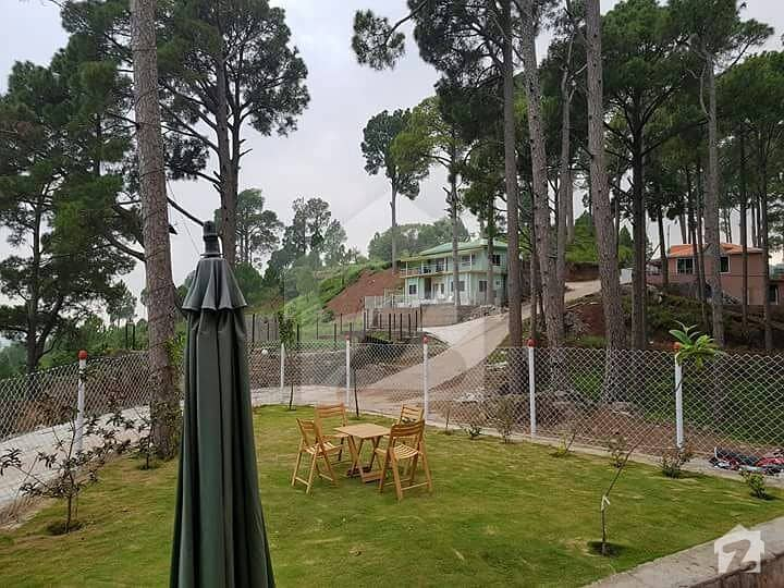 5 Marla On 1 Year Easy Installments With All Scenic Views Of Murree