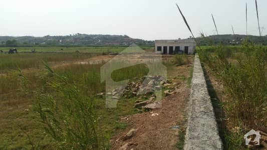 41 KANAL FARM HOUSE REAL PICS ATTACHED ADIALA ROAD MOZA DHALA ON LINK ROAD
