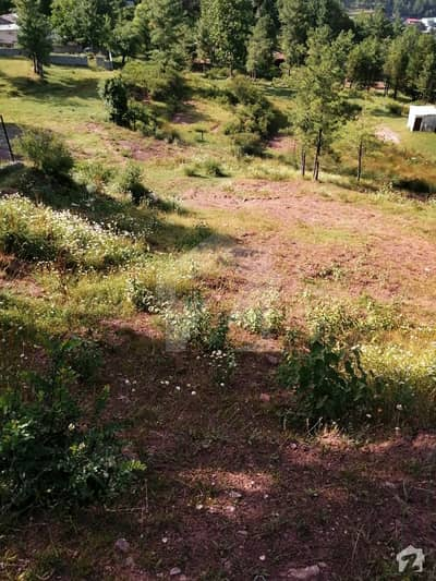 Commercial Land Is Available For Sale For Huts Apartments Private Living
