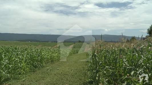 بلیو ورلڈ سٹی چکری روڈ راولپنڈی میں 8 کنال زرعی زمین 1.34 کروڑ میں برائے فروخت۔