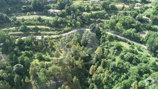 Highly Scenic View 3 Kanal Plot For Sale In Murree