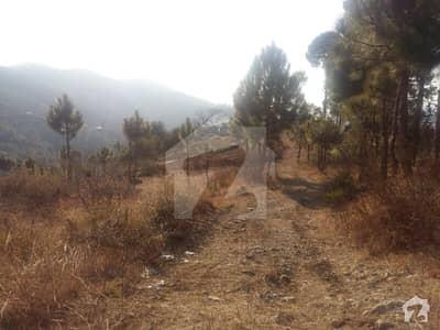 پیر سوہاوا روڈ پیر سوہاوا اسلام آباد میں 100 کنال رہائشی پلاٹ 3 کروڑ میں برائے فروخت۔
