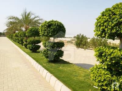 الجدید ریزیڈینسی کراچی میں 5 مرلہ رہائشی پلاٹ 32 لاکھ میں برائے فروخت۔
