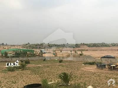 Agricultural Land and Agriculture Plots for Sale in Rawalpindi
