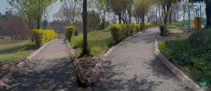 Chakri Road