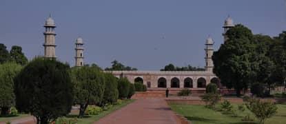 Al-Noor Orchard