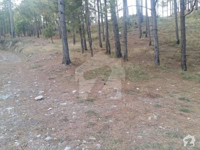 پیر سوہاوا اسلام آباد میں 2 کنال رہائشی پلاٹ 70 لاکھ میں برائے فروخت۔