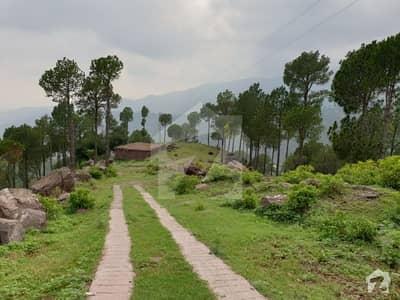 113 Kanal Multi Purpose Land For Sale In Khajut Murree
