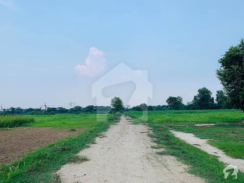4 Kanal Land For Farm House Is Available For Sale At Bedian Road