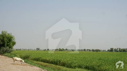 Agricultural Land and Agriculture Plots for Sale in