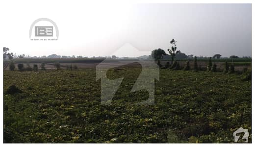 45 Acre Agricultural Land For Sale With Huge Tube Well In Kasur Road