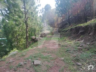 2 Kanal Plot For Sale Few Yards Away From Angori Road