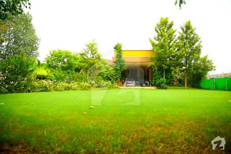 Farm House Available For Rent In Chak Shahzad