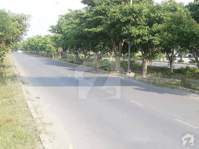 10 Marla Plot Available For Sale In Johar Block Hot Location