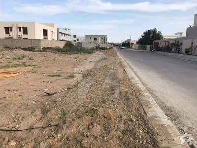 500 Yards Residential Plot D Cutting 4th Belt For Urgent Sale
