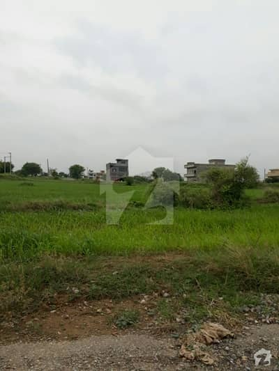 I-15/4 (25x50) Plot Is Available For Sale