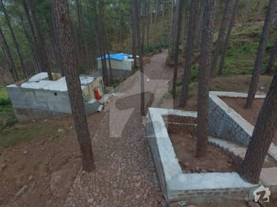 One Kanal Plot For Sale In Most Amazing Full Of Nature Area Of New Murree
