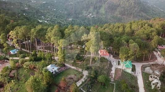 Residential Plot For Sale In New Murree