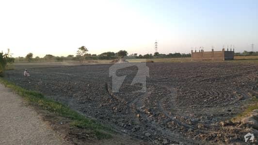 Agriculture Land For Sale At Gulshan-e-sher Bali Near Kella Medical Store, Badin Road