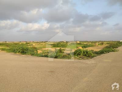 60 Feet Main Road 120 Sq Yards Residential Plot For Sale