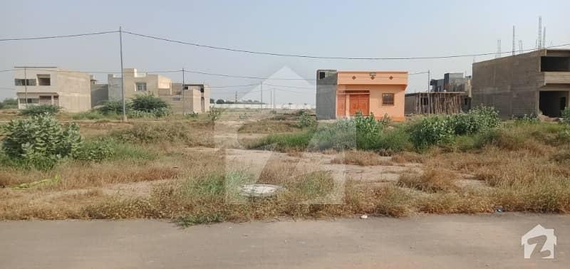 Plot For Sale At Musalmanan E Punjab Society