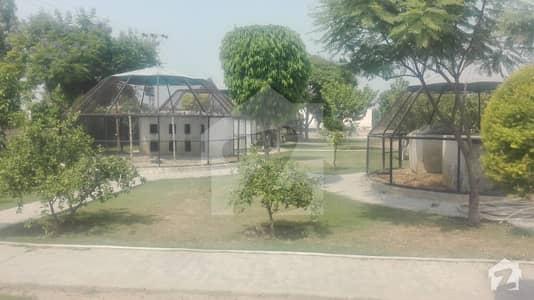 برکی روڈ کینٹ لاہور میں 22 کنال فارم ہاؤس 85 ہزار میں کرایہ پر دستیاب ہے۔